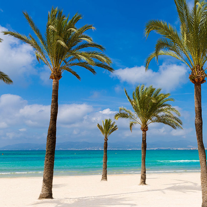 Playa De Palma How To Get There Hotel Hm Gran Fiesta Official