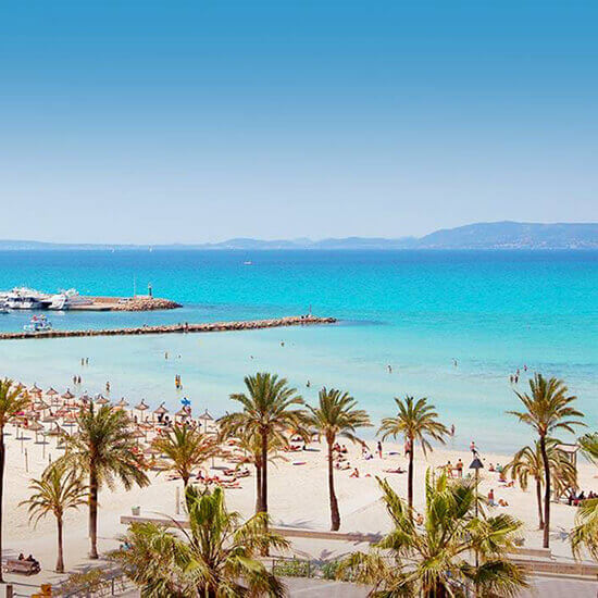 What To Do In Playa De Palma Hotel Hm Tropical Official